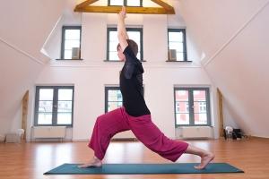 Hatha Flow, Yogaschule Rostock, Christian Bender